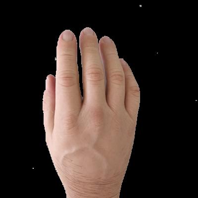 Hand_Cosmetics